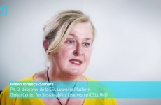 Aileen Ionescu-Somers – Intégrer les grandes entreprises dans la transition ?